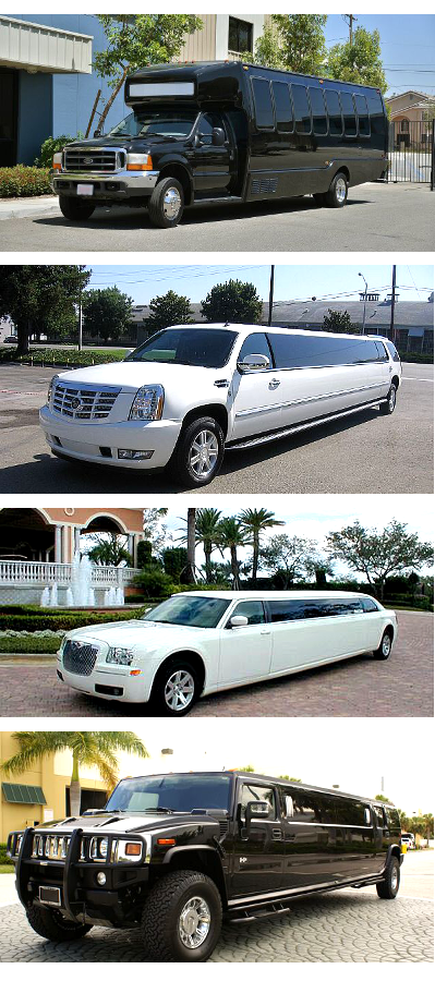 Party Buses and Limos South Carolina